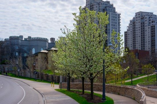 A picture of London, Ontario, where Erin Ross Psychology is located.