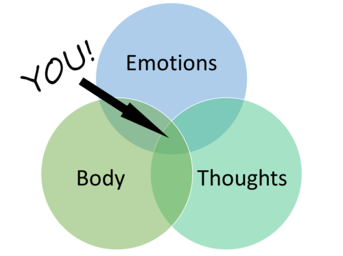 Diagram showing how therapy focuses on thoughts, emotions, the body, and the integration of these three. Illustration of concept of psychotherapy or psychological counselling.